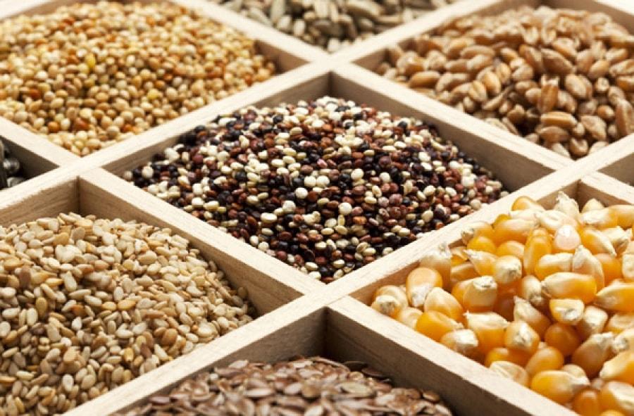 Κύρια φωτογραφία για το άρθρο: Ποιοι σπόροι χαρίζουν ενέργεια, πρωτεΐνες και πολλές φυτικές ίνες