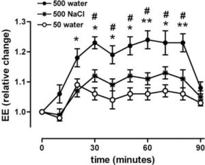 water boost metabolism
