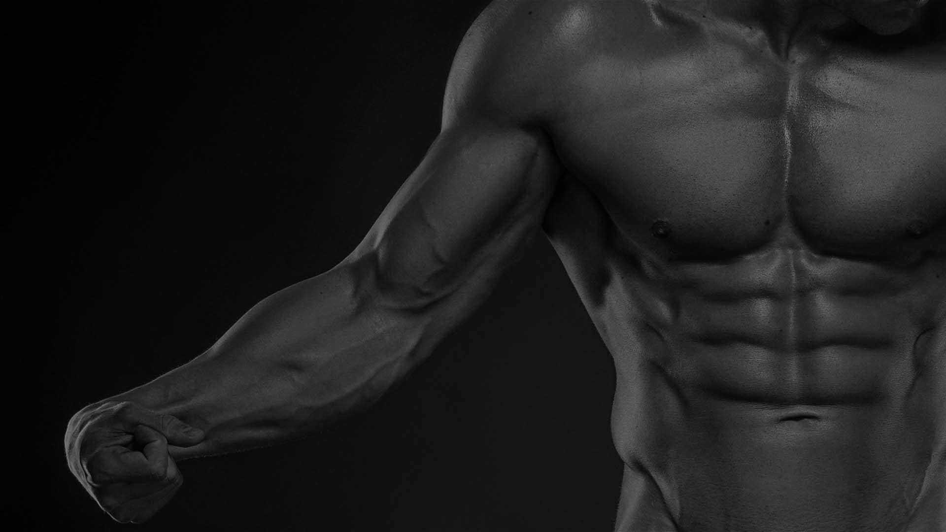 MP Fat Loss Training Methods & Nutrition ®