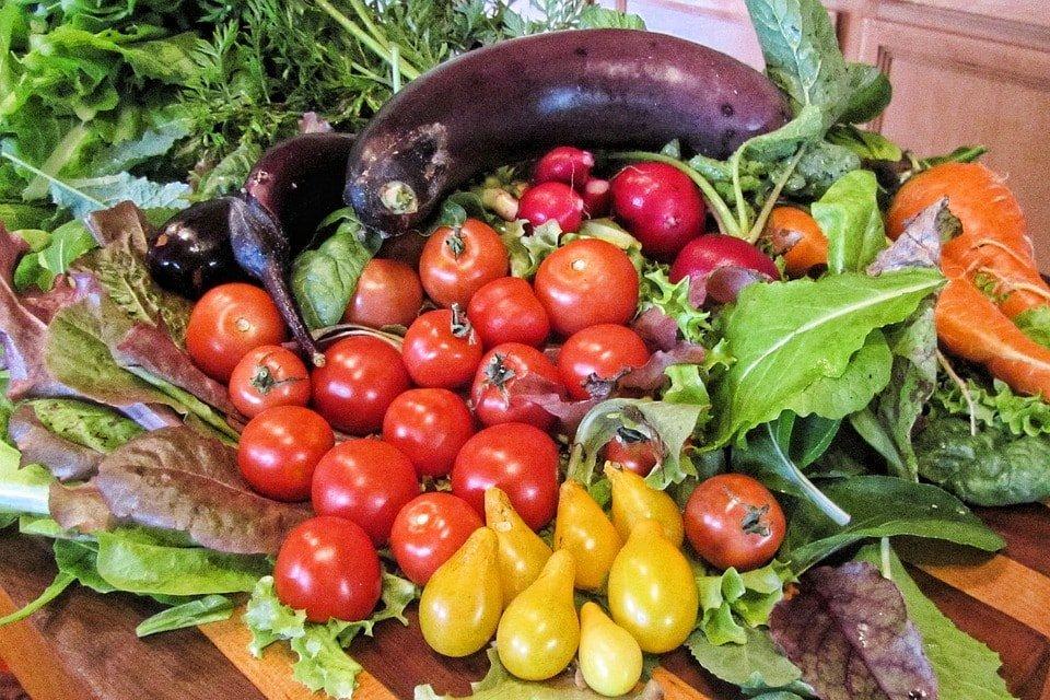 Κύρια φωτογραφία για το άρθρο: Μεσογειακή διατροφή