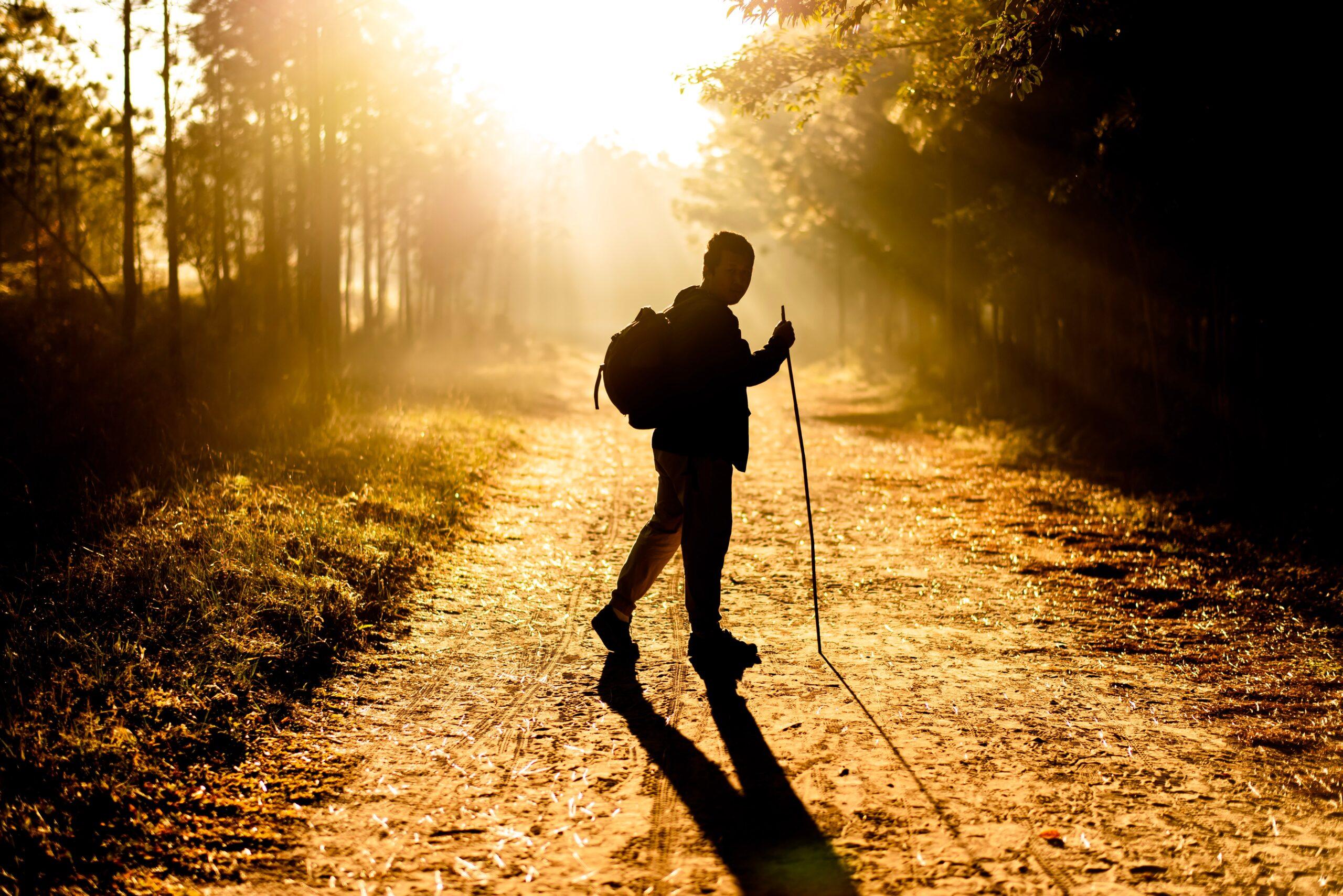 Κύρια φωτογραφία για το άρθρο: Πεζοπορία, 4 παράγοντες που την καθιστούν την πιο εύκολη και ιδανική μορφή άσκησης!